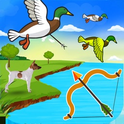 Big Archery Duck Hunting Game