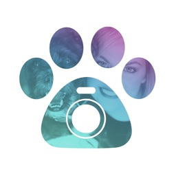 Petcam - Pet Camera