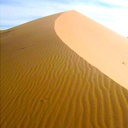 Sand Calendar & Day Planner