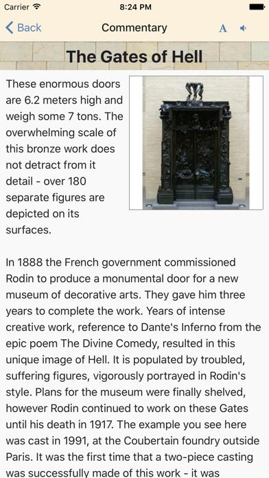 Rodin Wing Guide screenshot three