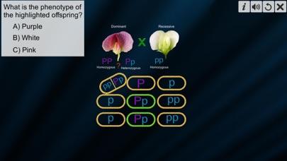 Test Cross: pea flower screenshot 6