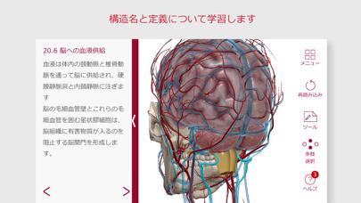 解剖学的構造と生理学のおすすめ画像4