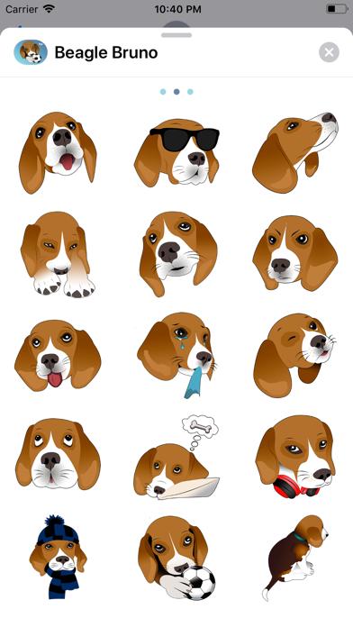 Beagle Bruno screenshot two