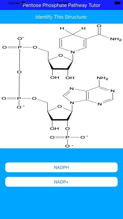 Pentose Phosphate Paths Tutor screenshot-5