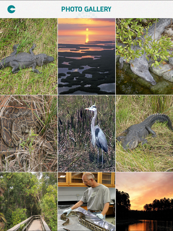 Everglades National Park screenshot 9