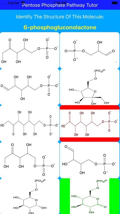 Pentose Phosphate Paths Tutor