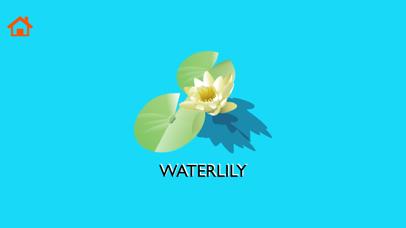 Flower & Fruit Names Learning screenshot 3