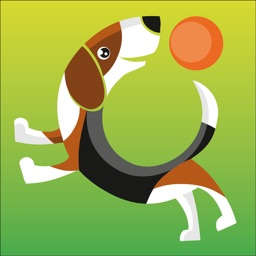 Bauwow The Pet Social Network