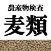 農産物検査標準品等 雑穀