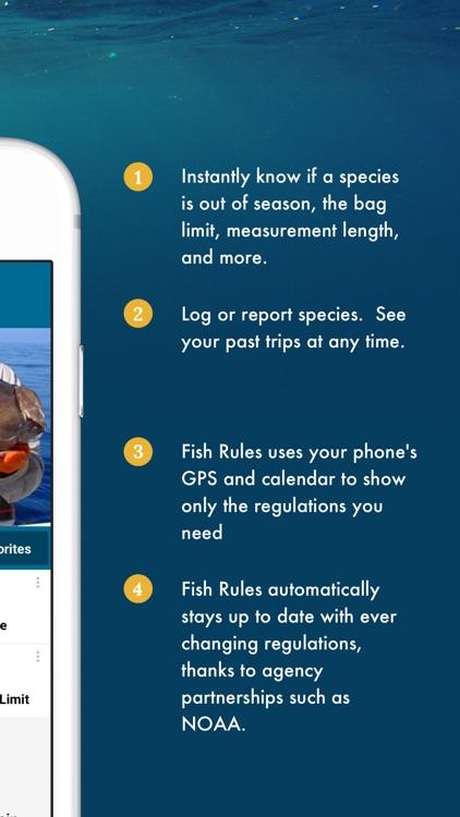 Fish Rules