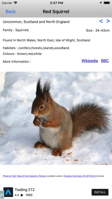 Mammals Of Britain screenshot three