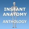 Instant Anatomy Anthology