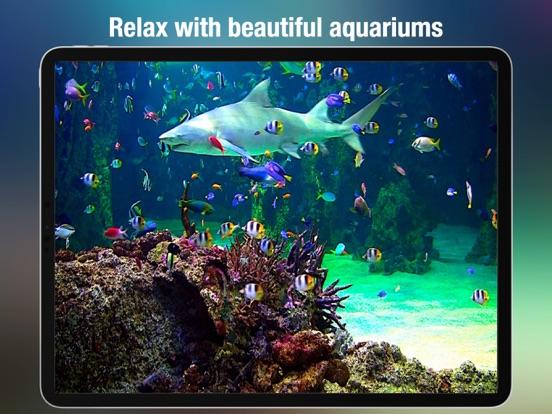 Aquarium - HD screenshot