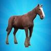My Horse Simulator