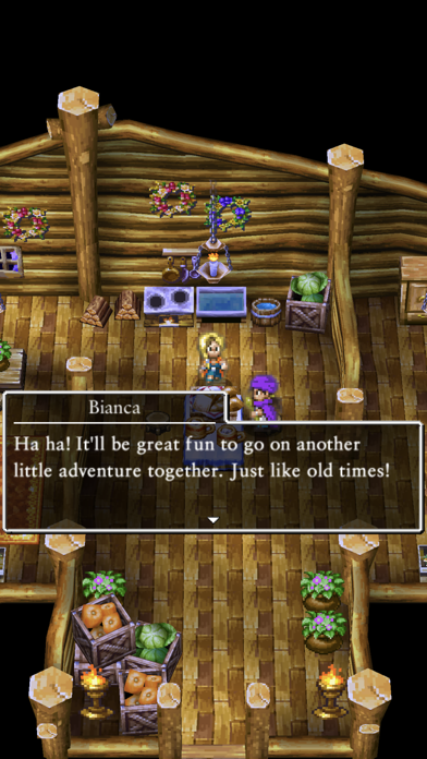 DRAGON QUEST V Screenshot