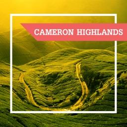 Cameron Highlands City Guide
