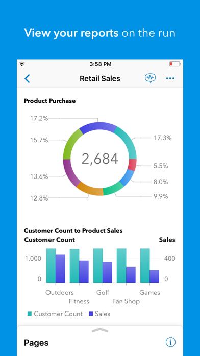 SAS Visual AnalyticsScreenshot of 4
