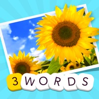 Codes for 3 Words: Summer – find the three secret words in one summery picture Hack