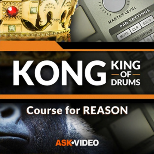 King of Drums Course for KONG