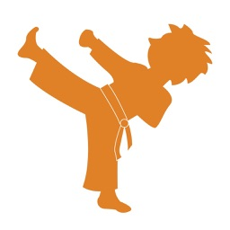 QuikLee: Karate for your mind