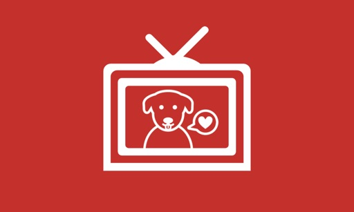 DOG RELAX TV