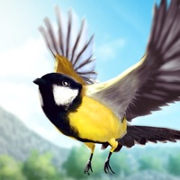 Codes for Bird Fly High 3D Simulator Hack