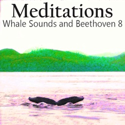 Meditations Whales Beethoven 8