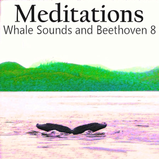Meditations Whales Beethoven 8 icon