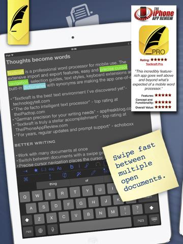 Textkraft Professional - náhled