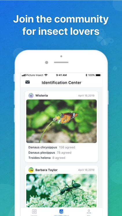 Picture Insect - Insect Id Pro screenshot-3