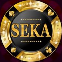 Codes for Seka by Seka-Ru.com Hack