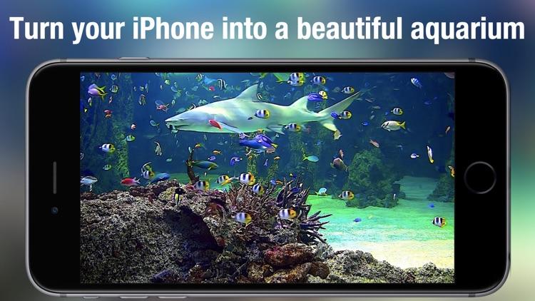 Aquarium Live HD +