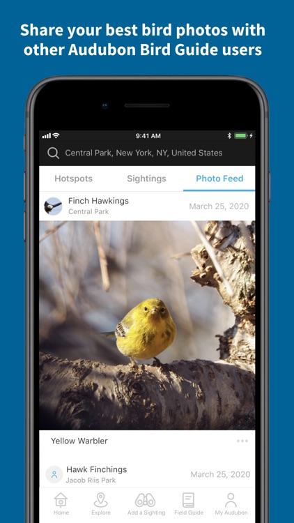 Audubon Bird Guide screenshot-4