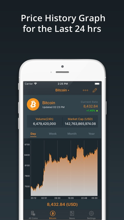 Bitcoin ‼ screenshot-2