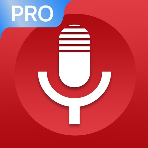 Voice Recorder - VOZ Pro