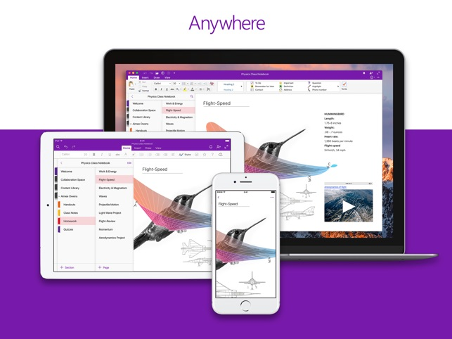 Microsoft OneNote on the App Store