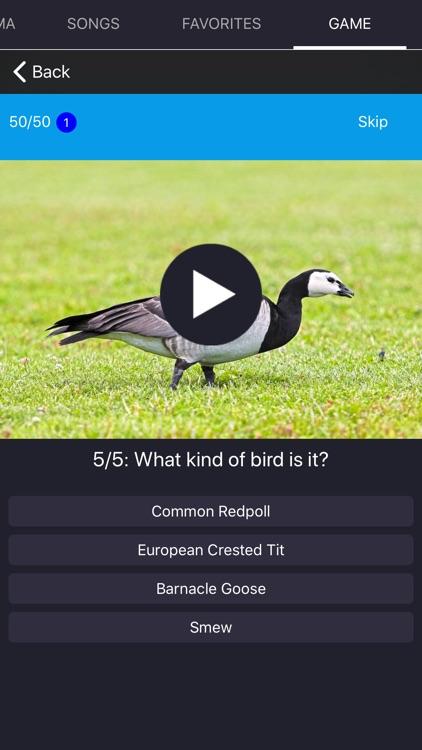 Bird Sounds and Bird Calls