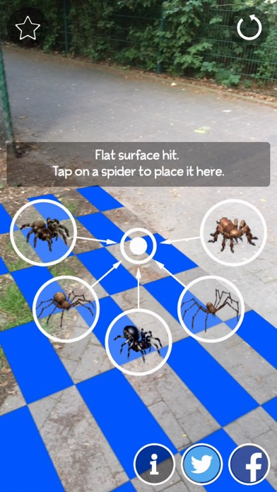 AR Spiders Screenshots