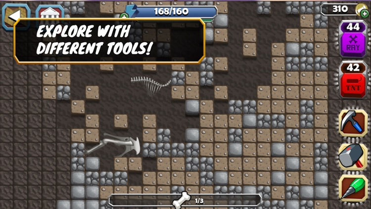 Dino Quest: Fossil Expedition screenshot-3