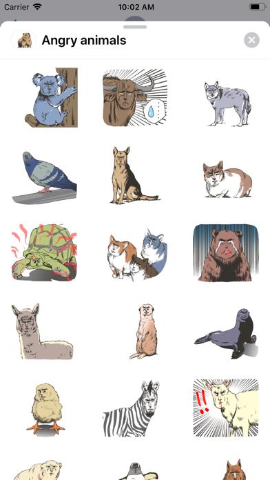 Angry - animals screenshot 1