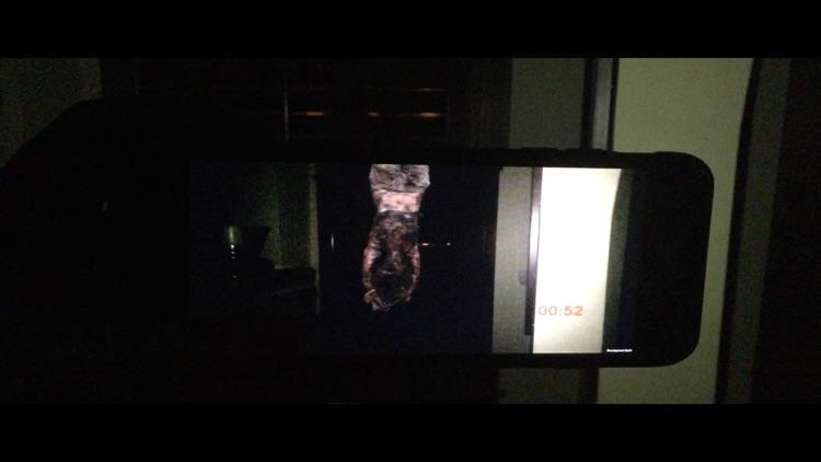 Night Terrors: Bloody Mary screenshot-5