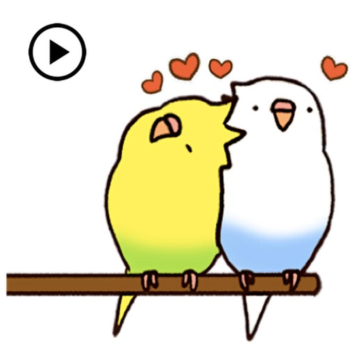Lovely Budgie Animated Sticker