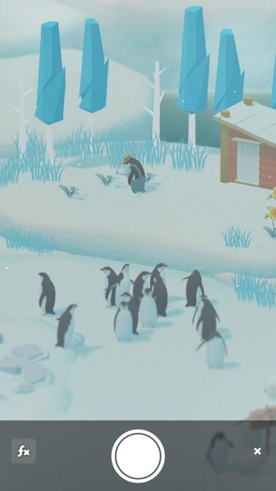 ペンギンの島 - 窓用