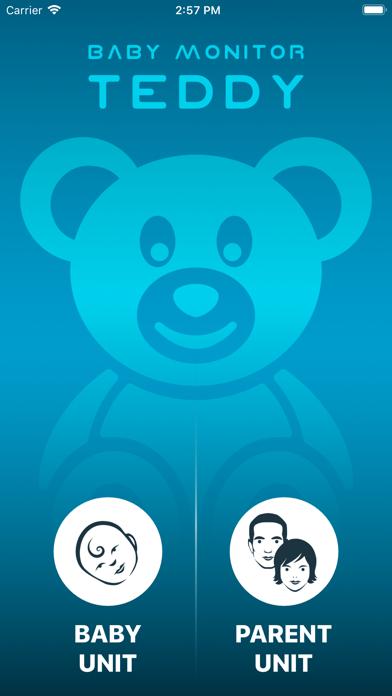 Baby Monitor TEDDY screenshot 2