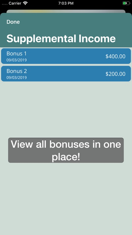 Project Budget screenshot-4