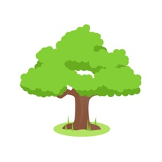 Activities of Afforestation