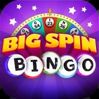 Codes for Big Spin Bingo|Best Bingo Game Hack