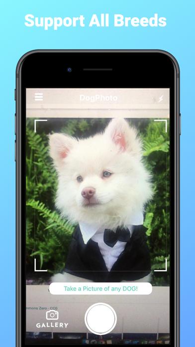 DogPhoto - Dog Breed Scanner screenshot 4