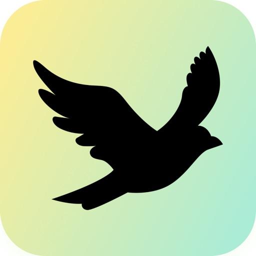 BlackBird - Creative Ecosystem