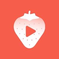 草莓卡点视频 -卡点视频制作 &卡点神器